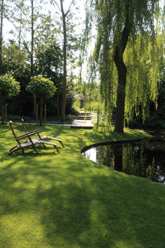 Simple Landscaping Ideas for Wet Backyard You Can Try ... on Landscaping Ideas For Wet Backyard id=77800