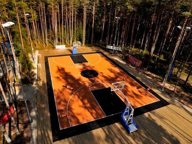 Nature-Inspired Basketball Court