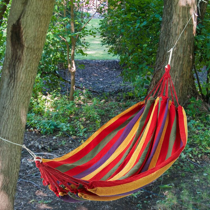 pictures of colorful hammocks