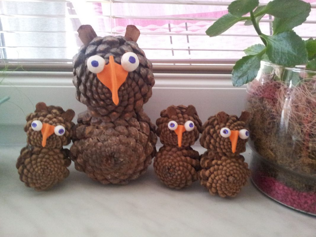 The Pine Owl School Garden Ideas