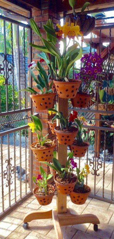 The Flower Tower School Garden Ideas
