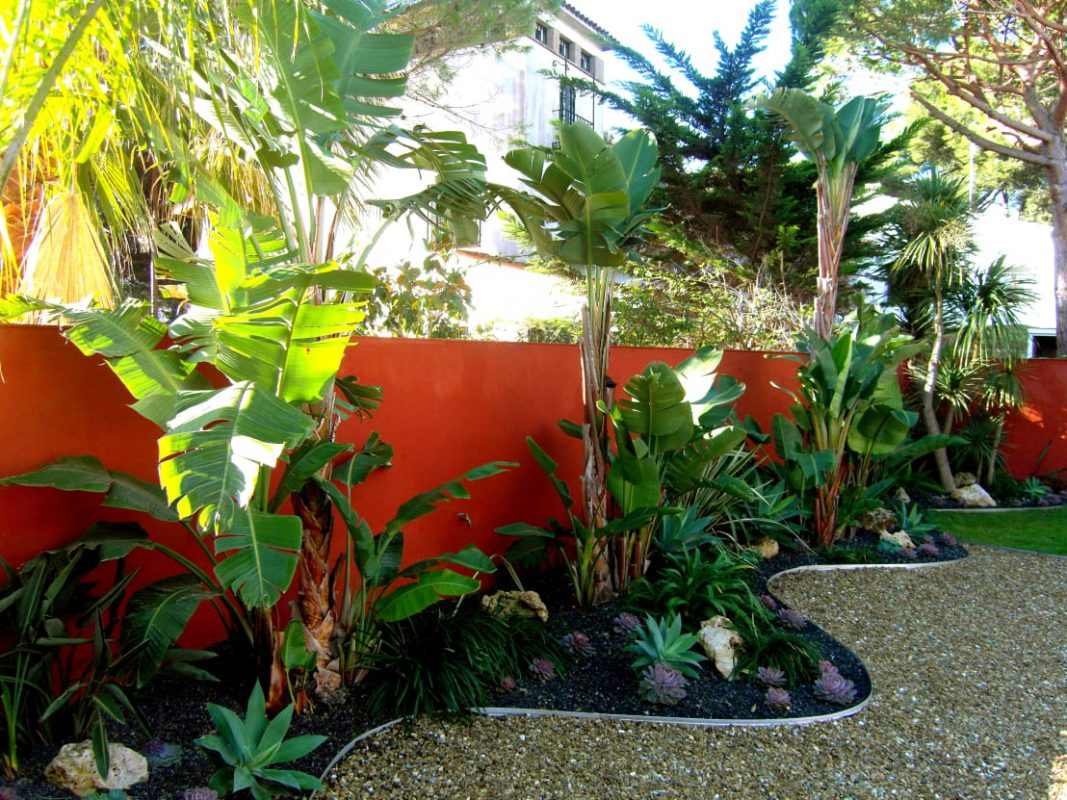 tropical backyard patio ideas