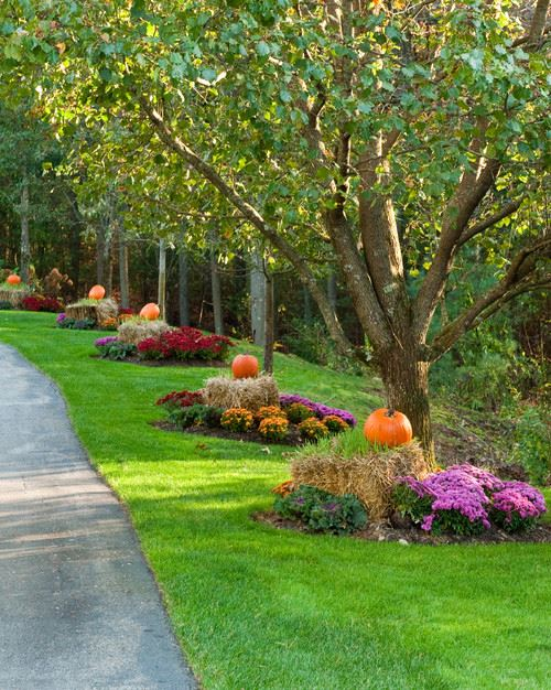 fall outdoor landscaping ideas