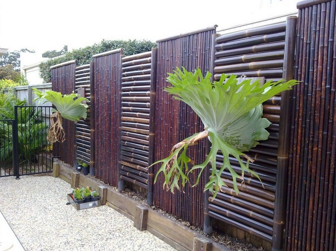 bamboo fence treatment