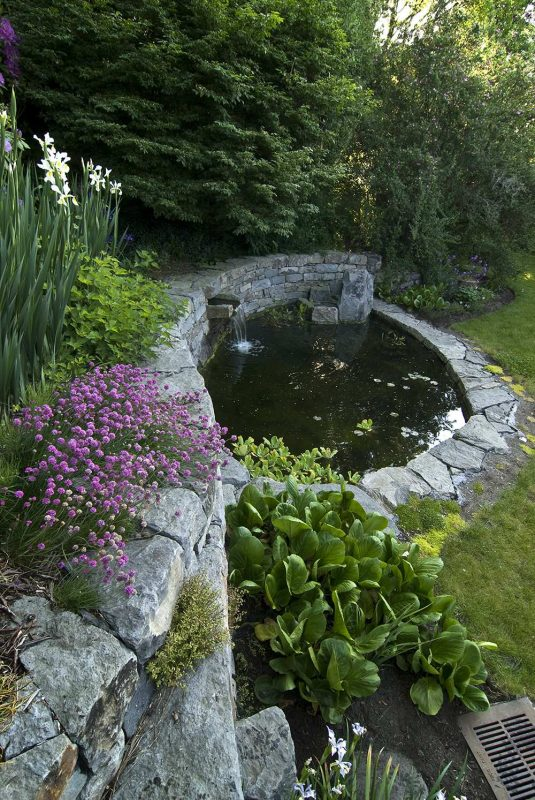 DIY Backyard Koi Pond under Garden