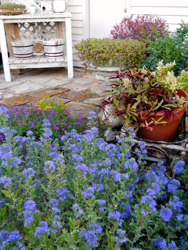 Simple Landscaping Ideas for Wet Backyard You Can Try ... on Landscaping Ideas For Wet Backyard id=56036