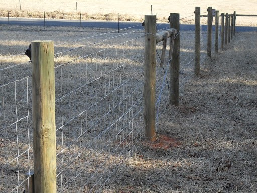 Easy and Affordable horse fence
