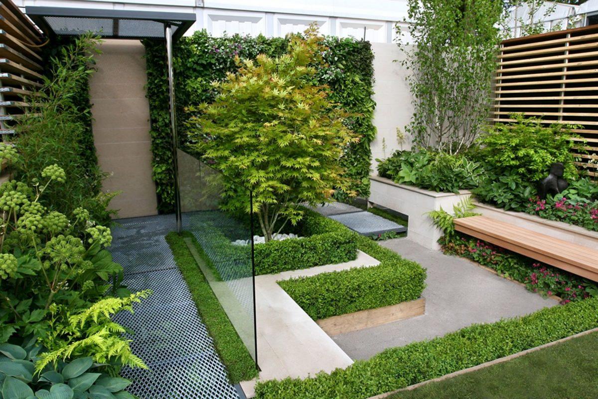 mid century modern backyard design