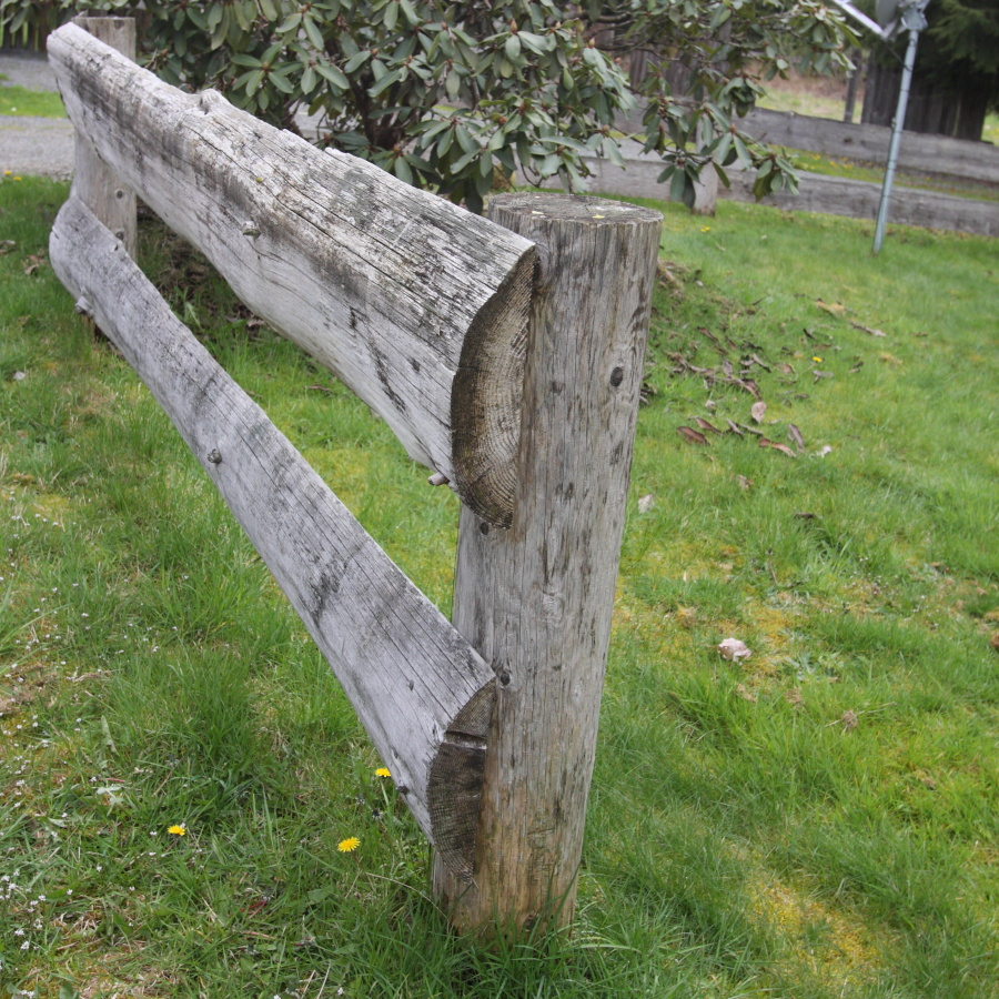 half log horse fence rails