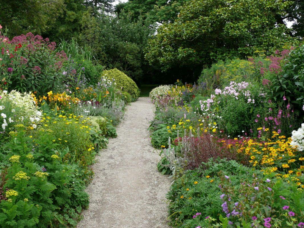 Landscaping Ideas for Wet Backyard with Flowering Shrubs