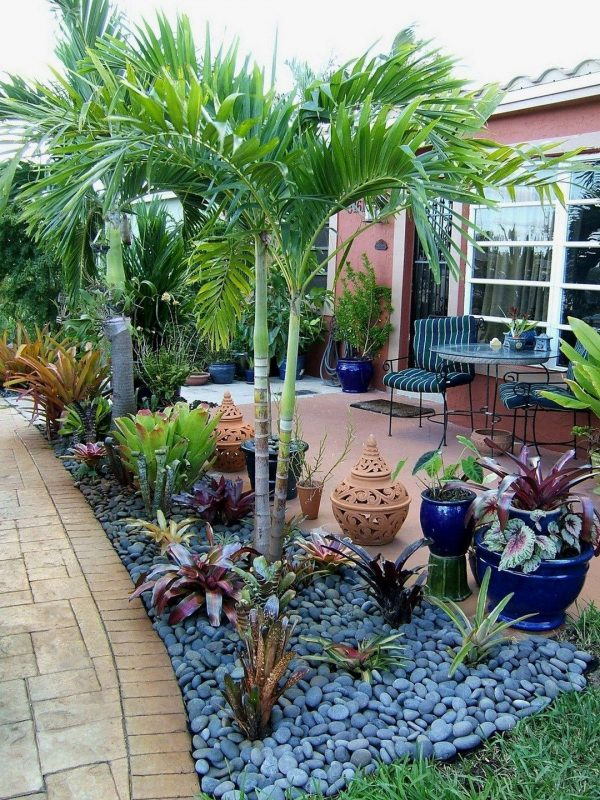 best tropical backyards low maintenance