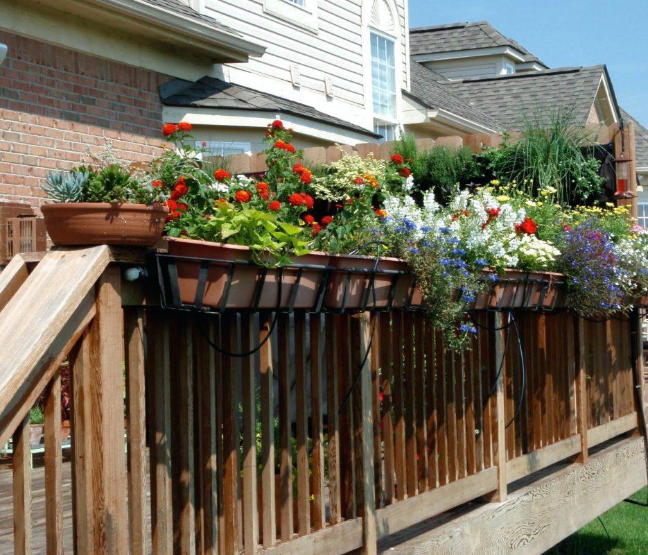 deck and home garden sprayer