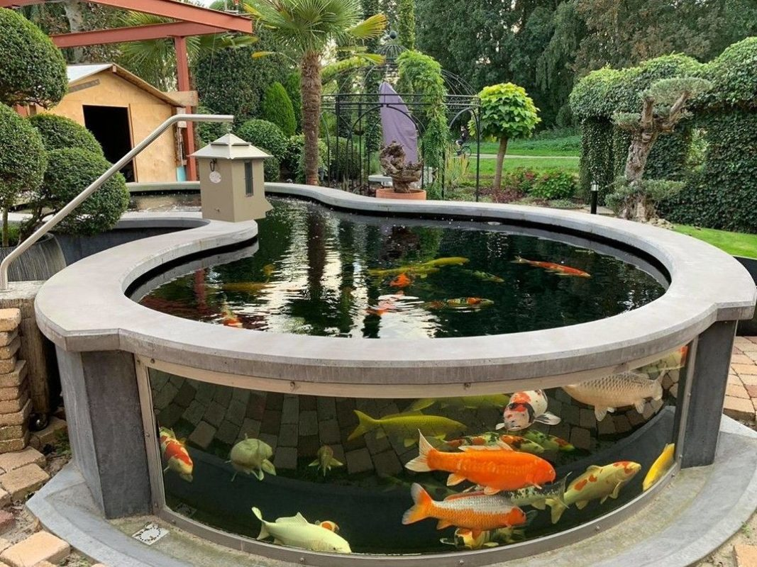 Modern Backyard Koi Pond