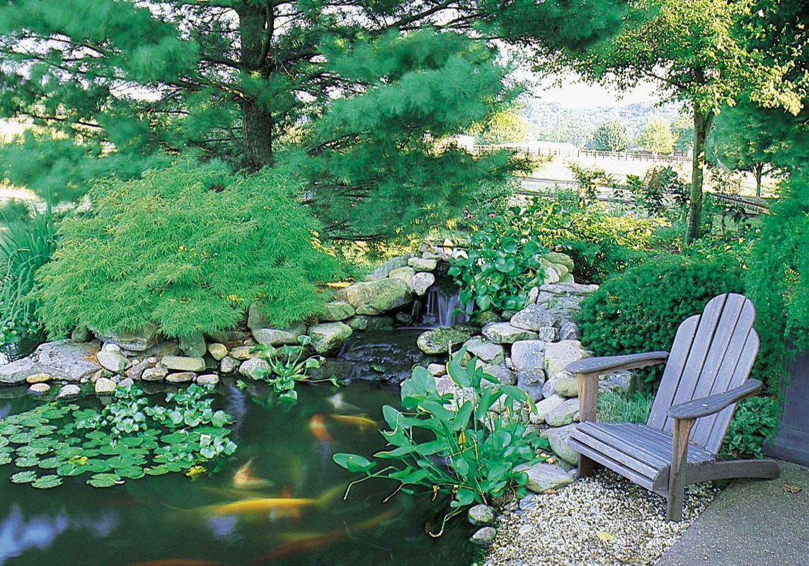 Natural River for Backyard Koi Pond
