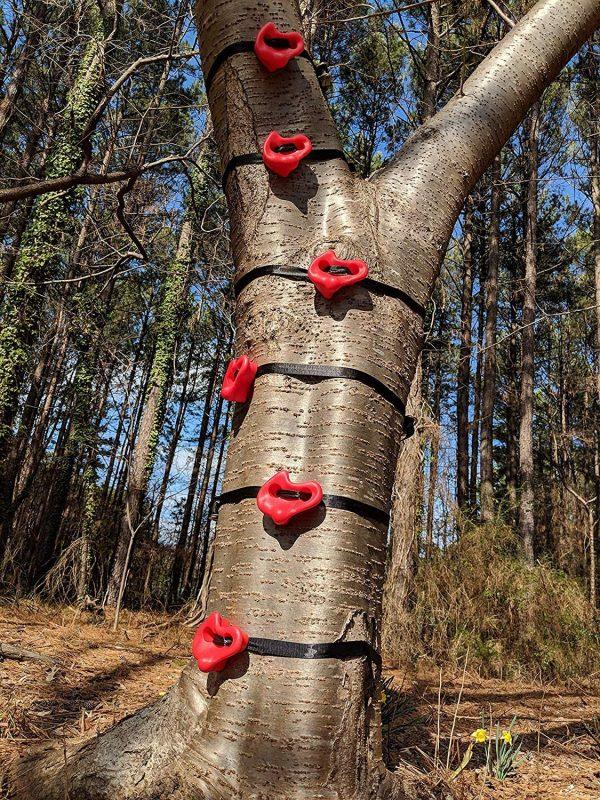 Ninja Tree Climbers