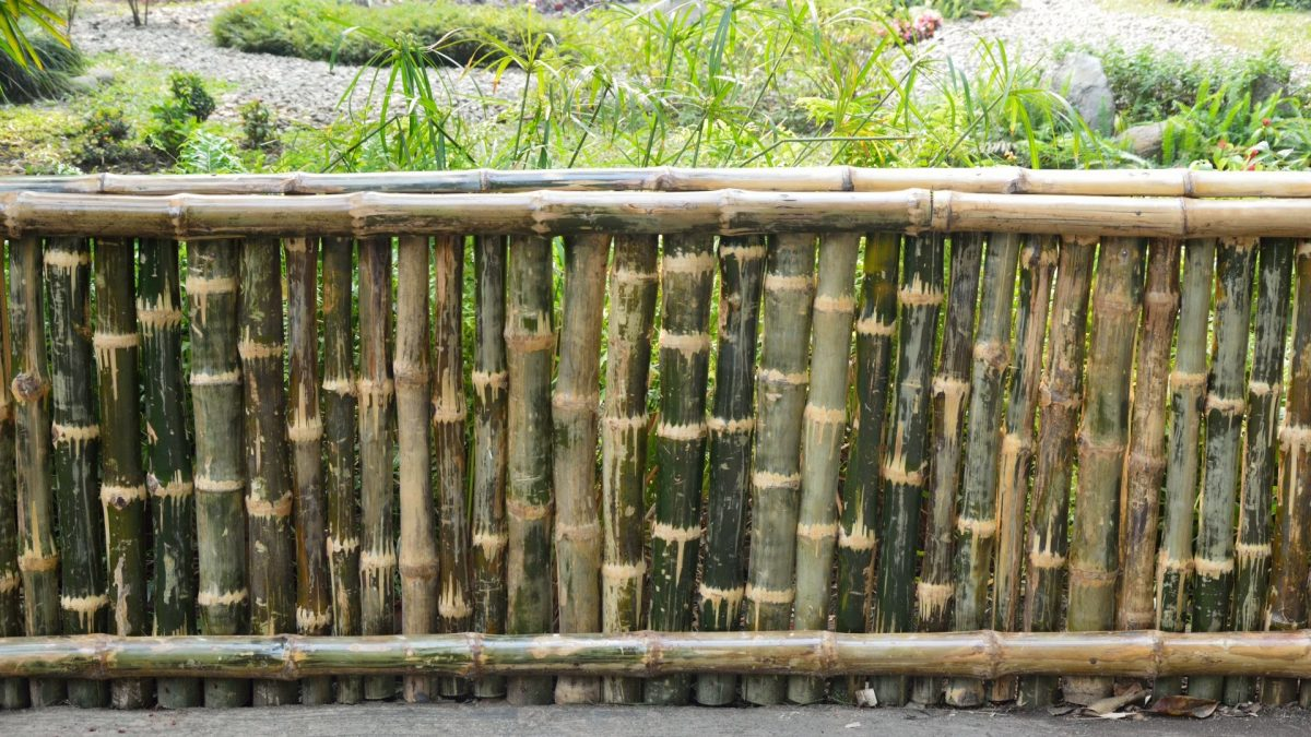 Picture of: 25 Bamboo Fence Ideas For Privacy And Aesthetic Inbackyard