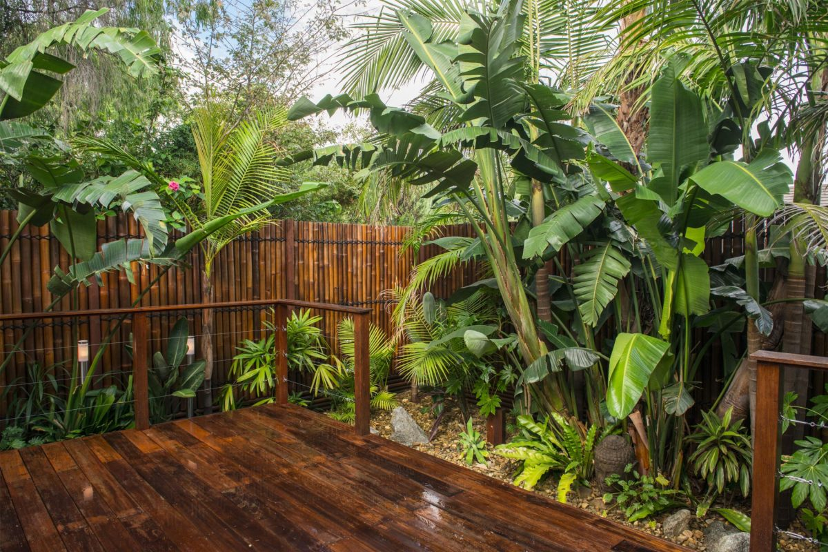 tropical backyard landscape designs