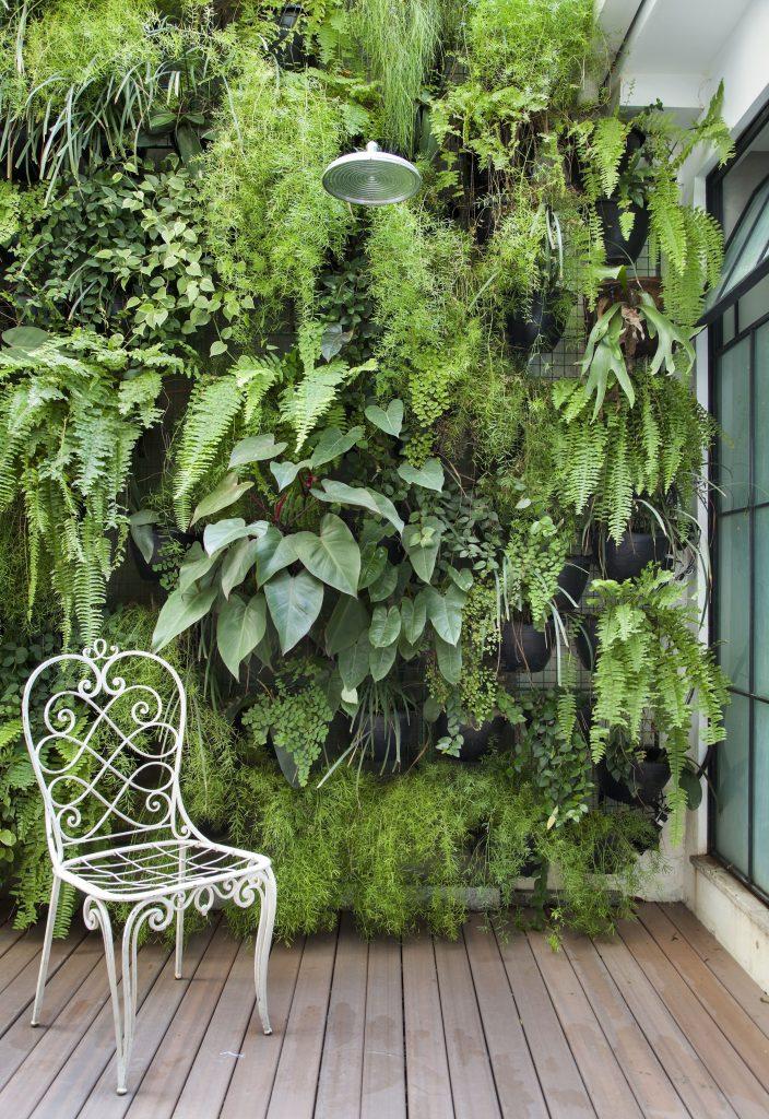 green wall deck garden