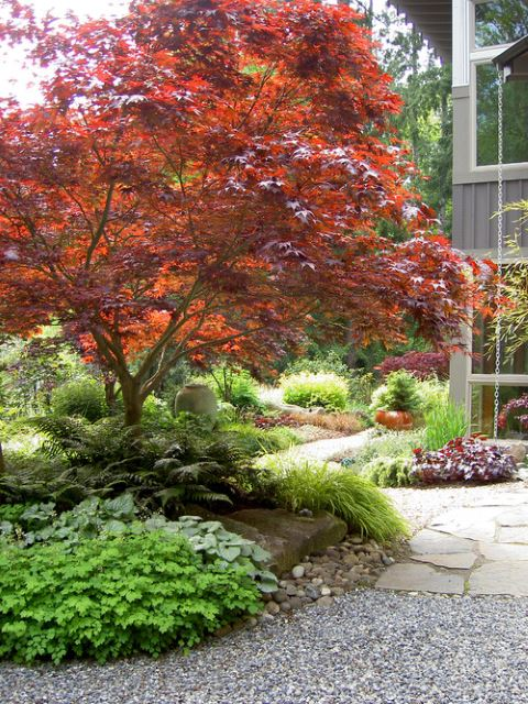 Color-Changing fall landscaping ideas front yard