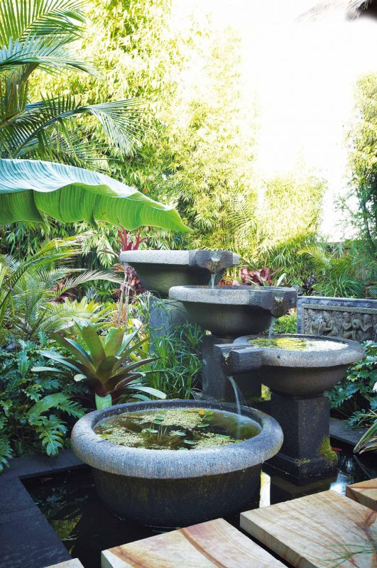 tropical garden idea
