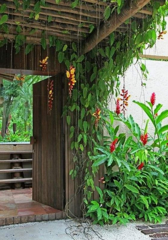tropical pergola ideas