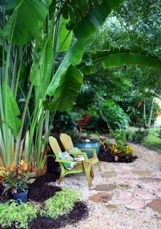 tropical backyards creations