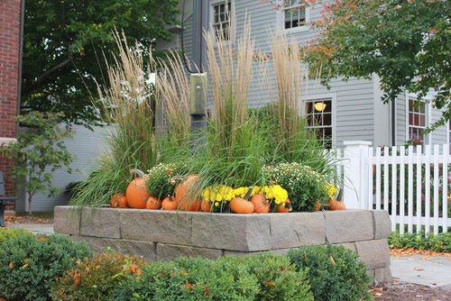 Raised Bed fall landscape
