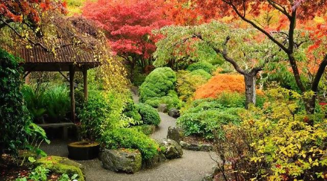 fall/winter landscaping ideas