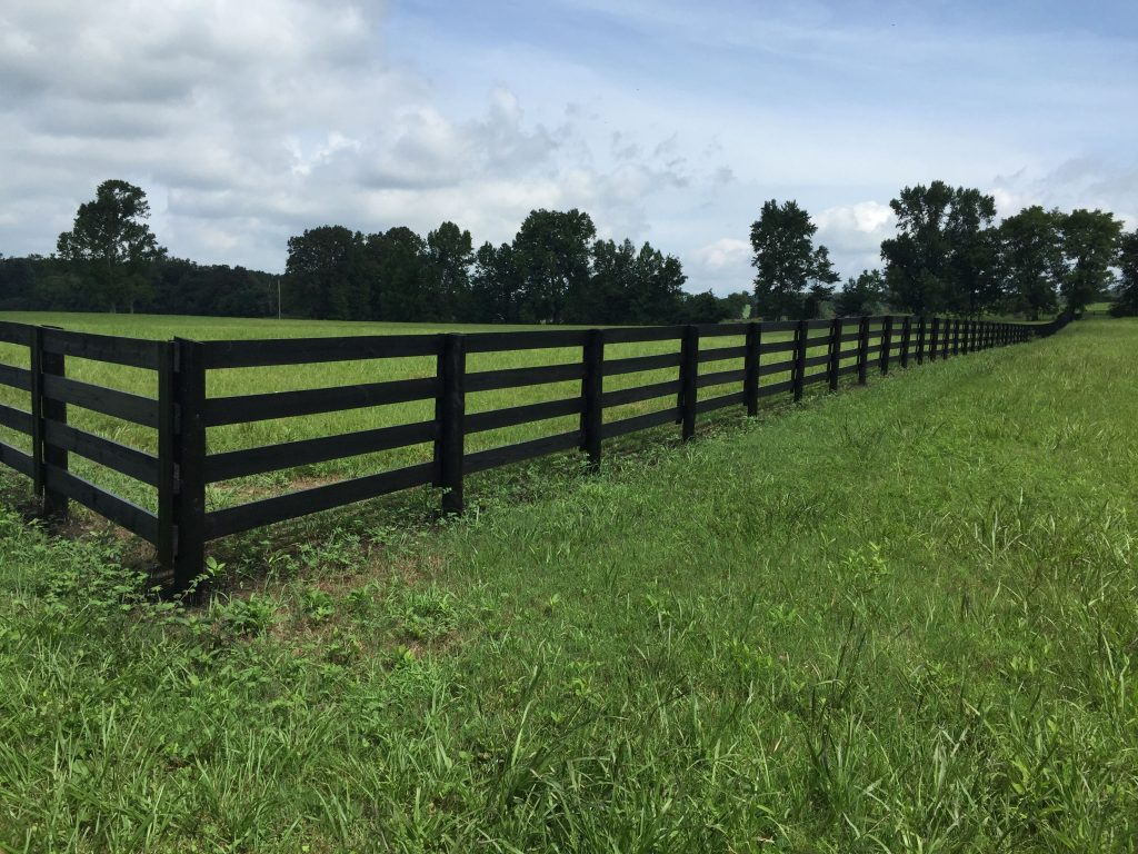 black horse fence stain