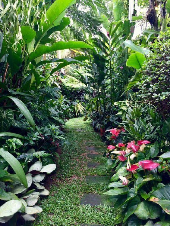 fresh landscape backyard
