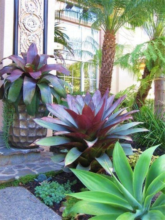 Colorful Garden concept