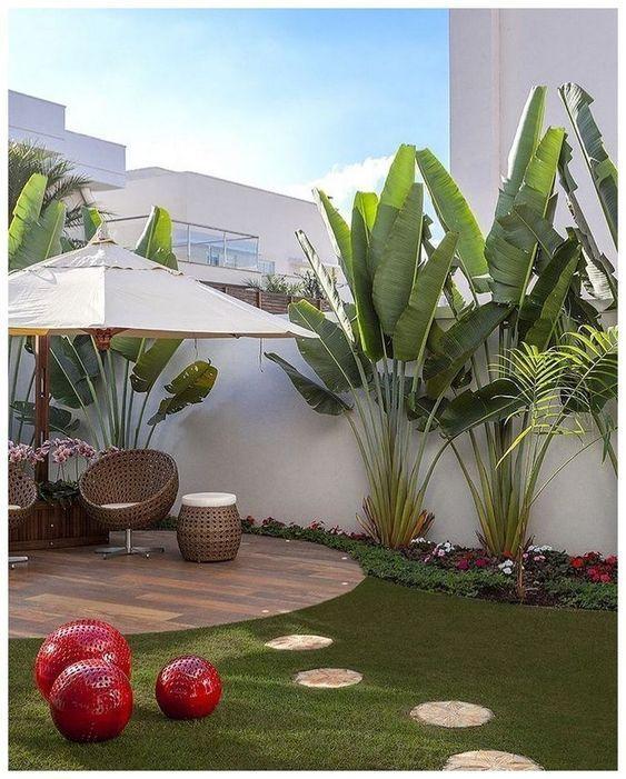 large tropical backyard minim
