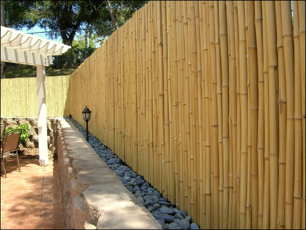 bamboo fence ceiling