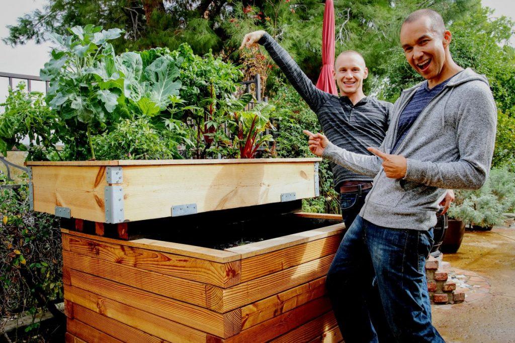 DIY Enclosed Backyard Aquaponic
